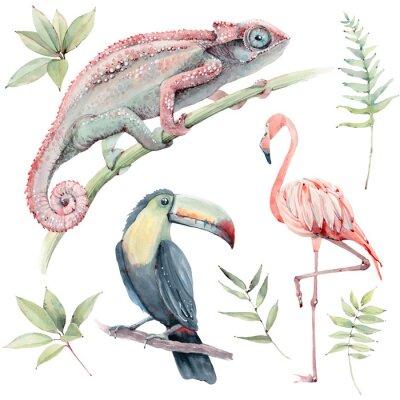 Наклейка watercolor tropical animals set.