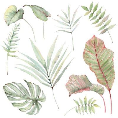 Наклейка watercolor tropical plants set.