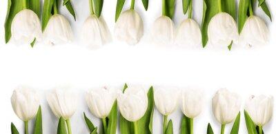 Наклейка Белые тюльпаны с тенью