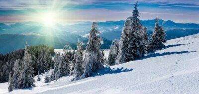Наклейка Зимний панорамный пейзаж в горах. Заснеженные деревья и горные вершины на расстоянии.