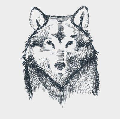 Наклейка Волк глава гранж рисованной эскиз векторные иллюстрации