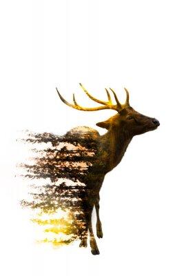 Наклейка Всемирный день дикой природы Концепция охраны окружающей среды и дикой природы