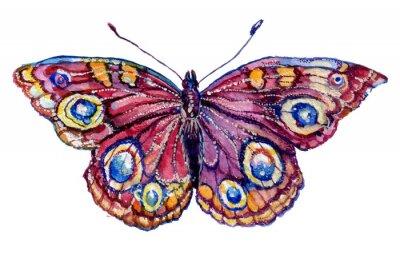 Наклейка бабочка акварель, графика, насекомое, рисунок,