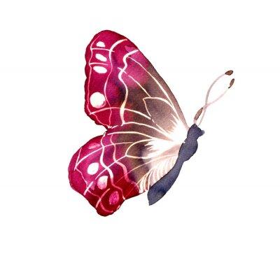 Наклейка 바틱 염색 기법 으로 그려진 나비