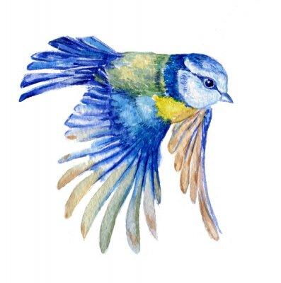 Наклейка птица синица