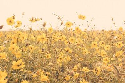 Наклейка желтый цветок луг старинные ретро
