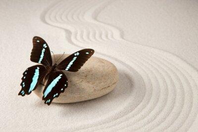 Наклейка Zen бабочка